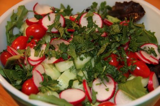 Herb Tossed Salad with Lemon Coriander Dressing